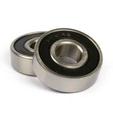 SKF 6309 ZNRJEM  Single Row Ball Bearings