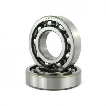 NSK 6007VVC4  Single Row Ball Bearings
